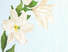 Kort med maleri av hvite liljer på lyseblå bakgrunn. Bilde.